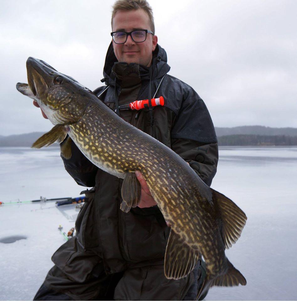 Eisangeln in Schweden bringt solche Hechte durchs Eisloch. Glücklicher Fänger präsentiert den Fisch.